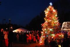 Village-of-Islandia-Christmas-Tree-Lighting-2015