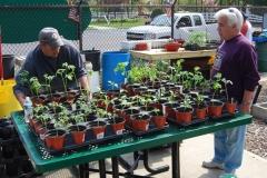 community-planting-5-7-11-005
