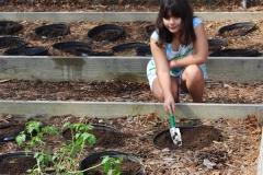 community-planting-5-7-11-007