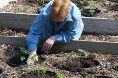 community-planting-5-7-11-012