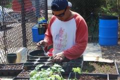 community-planting-5-7-11-023