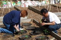 community-planting-5-7-11-030