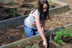 community-planting-5-7-11-035