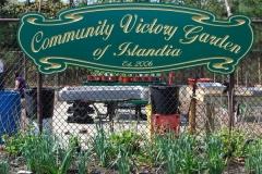 community-planting-5-7-11-036