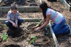 community-planting-5-7-11-039
