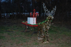 islandia-tree-lighting-12-1-12-006