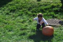 Pumpkin-Fest-13-037