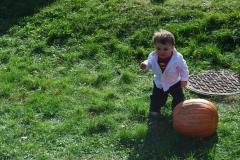 Pumpkin-Fest-13-038