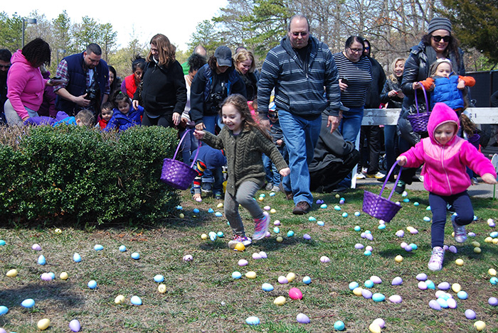 Children run out to collect some of the 8,000 Easter eggs that were laid out on the grounds of Village Hall during Islandia Village's 12th Annual Easter Egg Hunt on April 8.